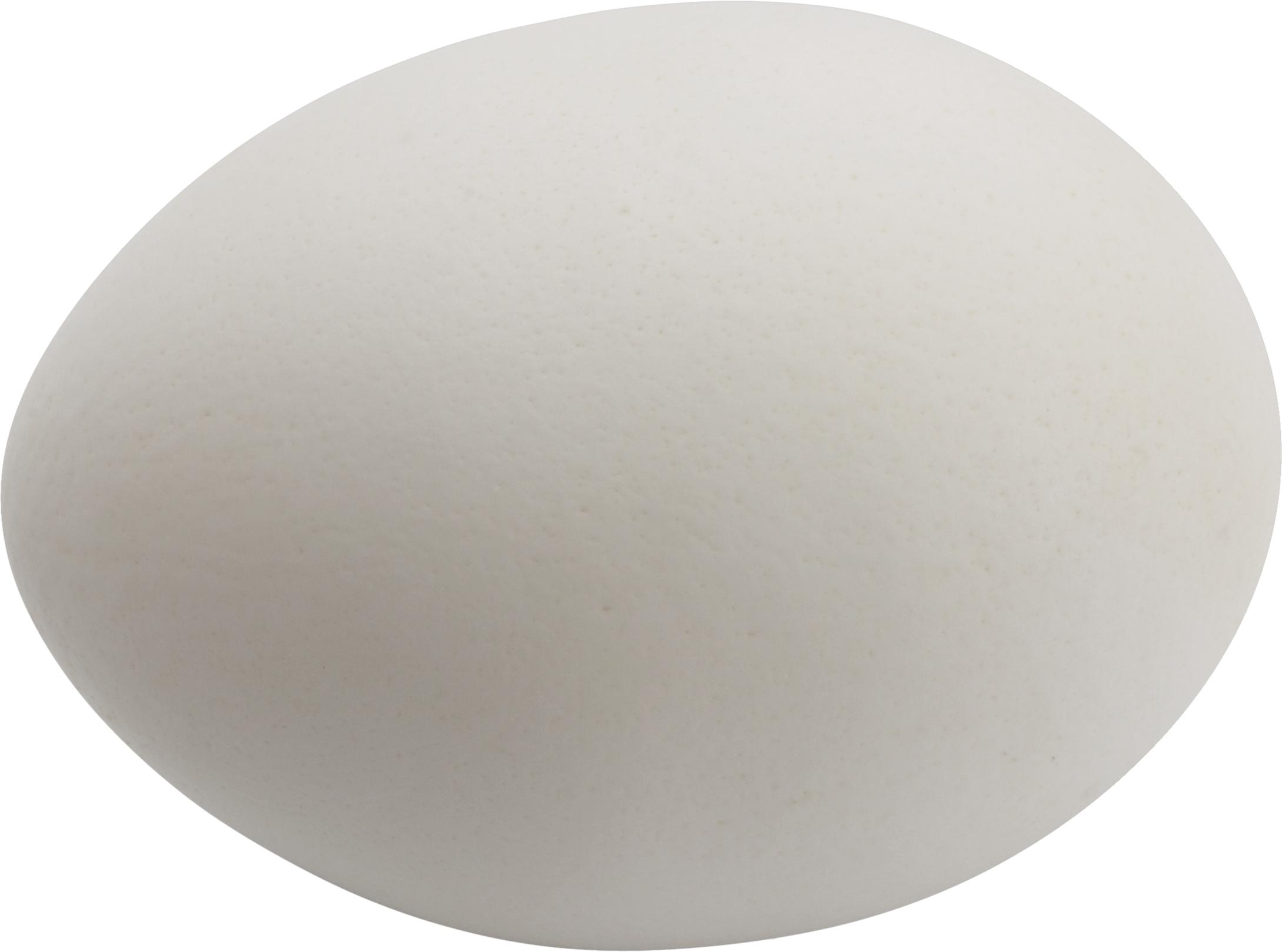 Egg HD PNG - 94556