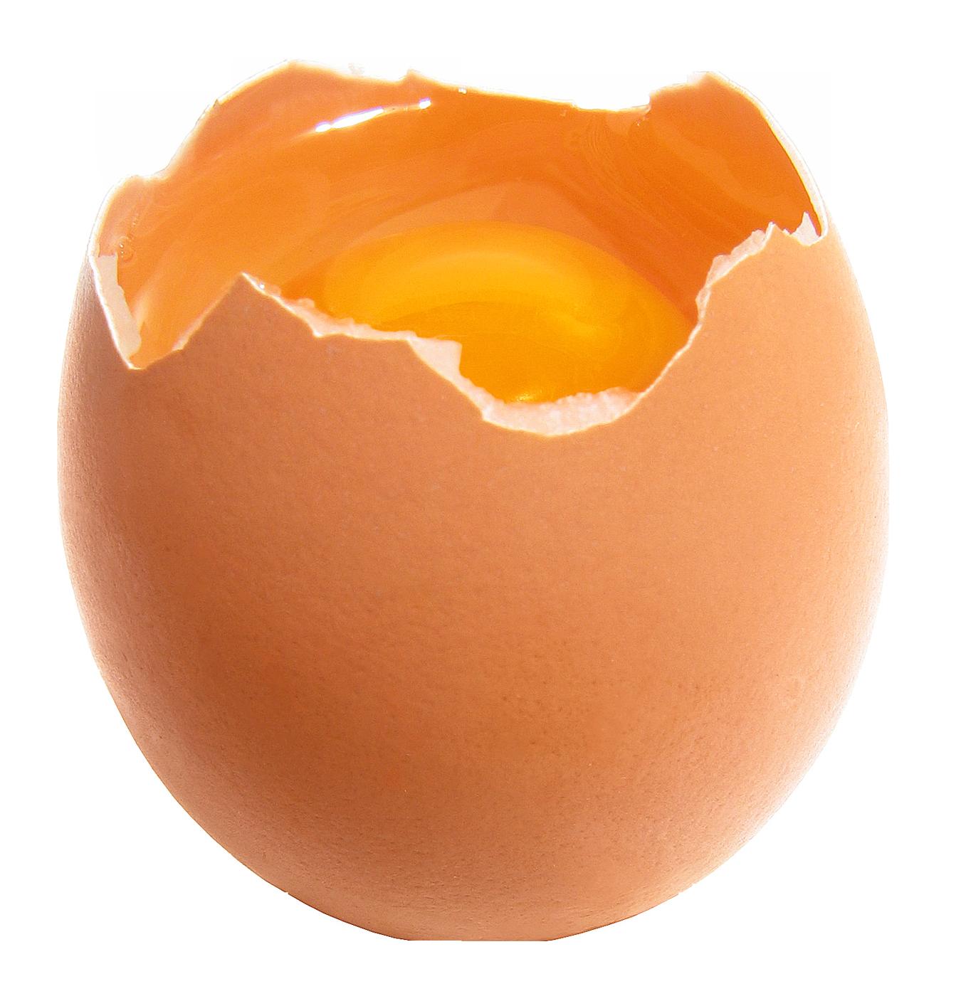 Egg PNG-PlusPNG.com-1350 - Egg PNG