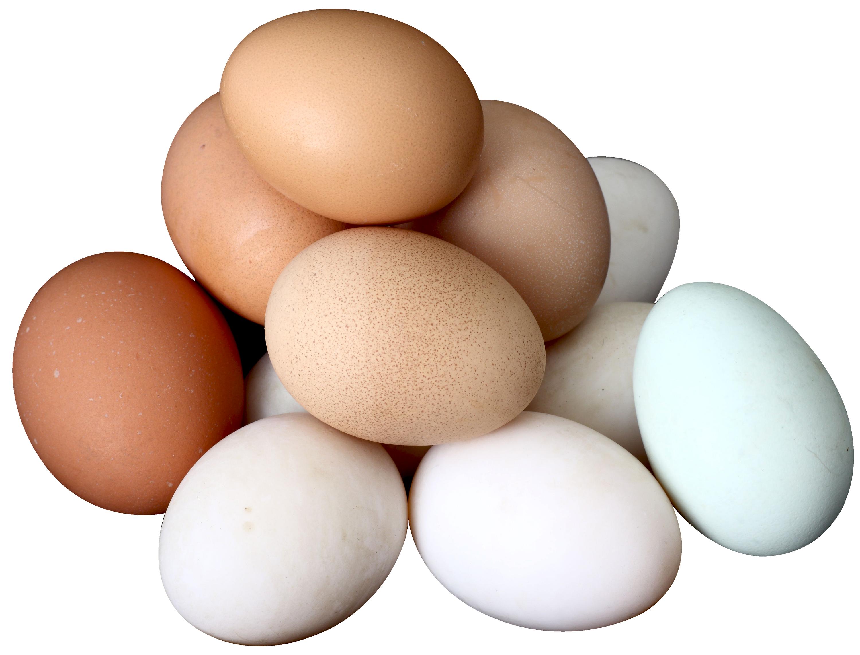 Egg PNG-PlusPNG.com-3000 - Egg PNG