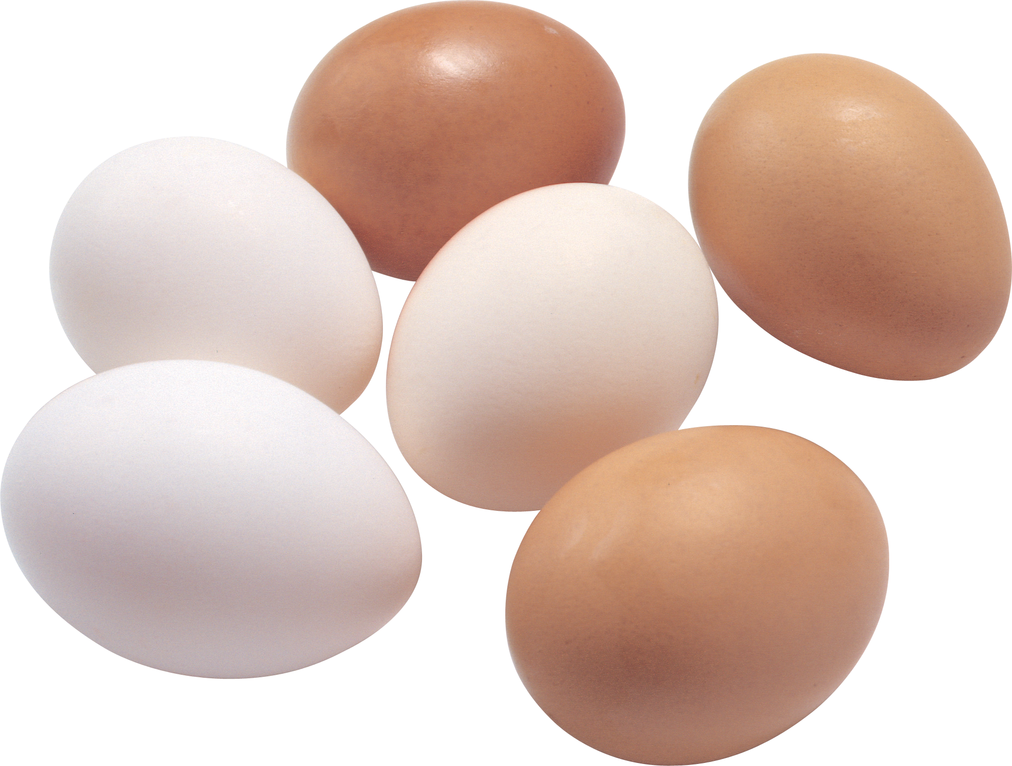 Egg PNG - 18569