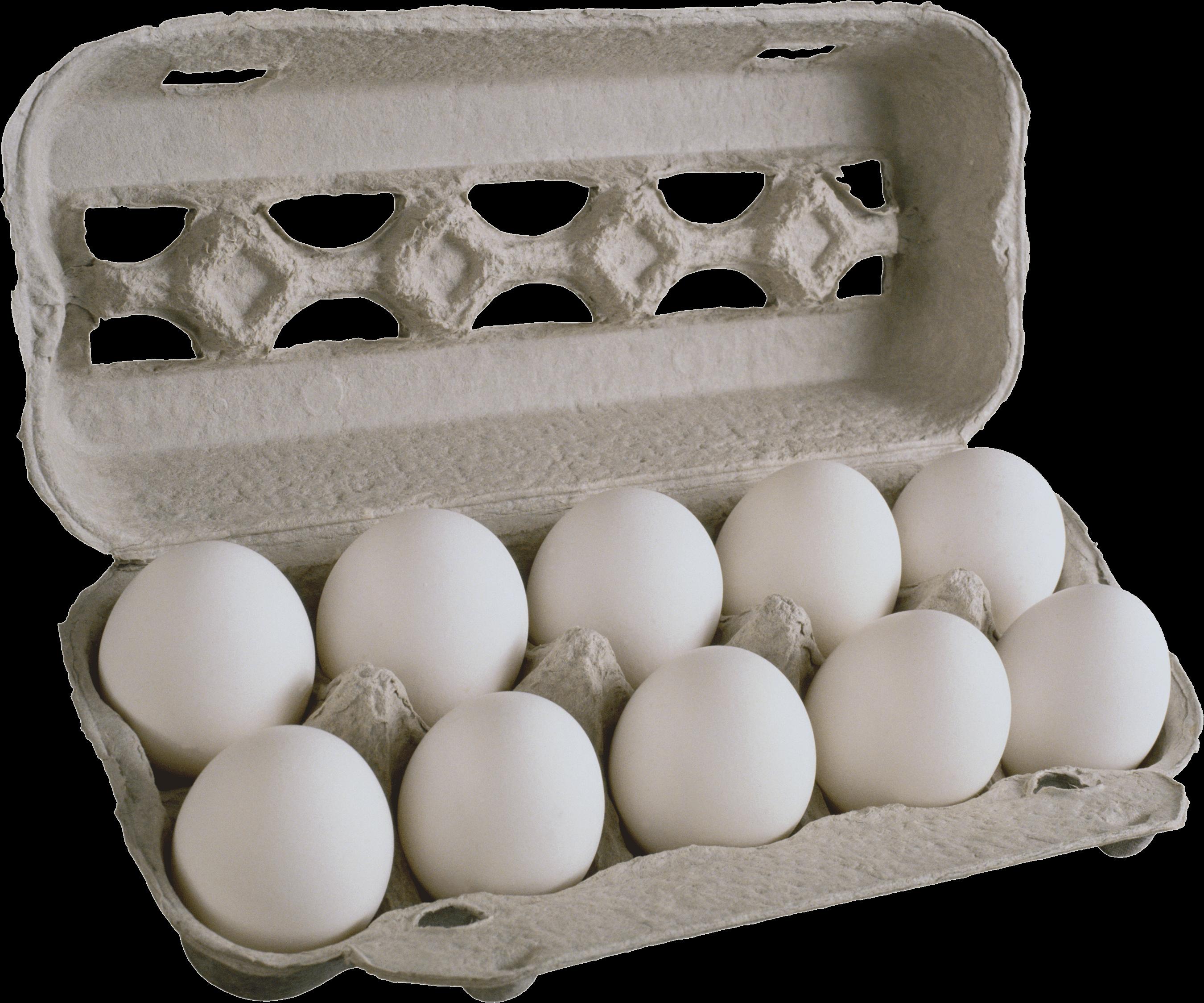 Pack Eggs - Egg PNG