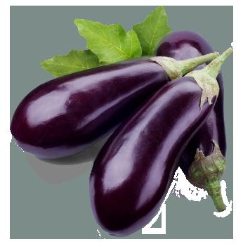 Eggplant HD PNG