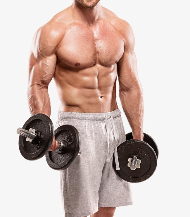 Musculosa Fitness, Fitness, Movimiento, Gimnasio Imagen PNG Gratis - El Gimnasio PNG