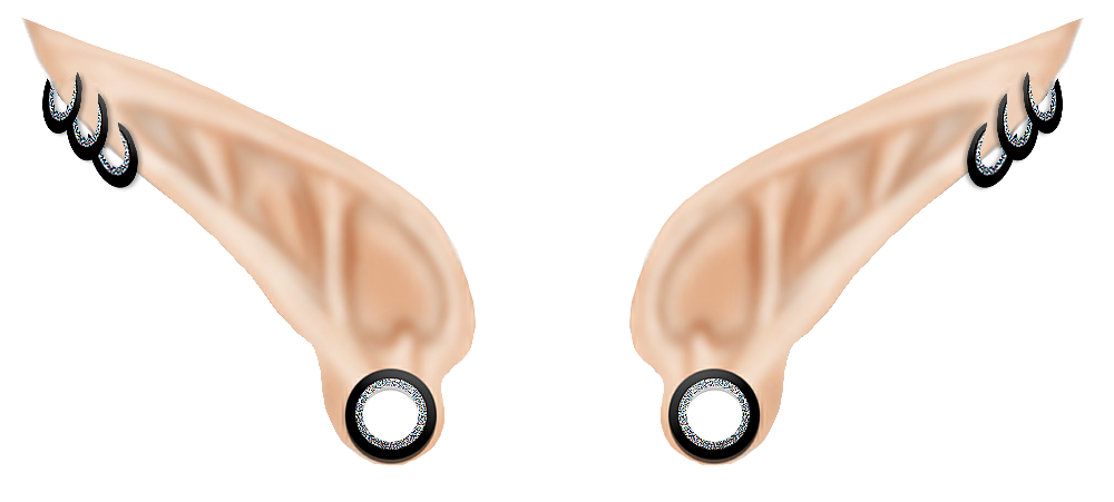 Elf Ears PNG - 62649