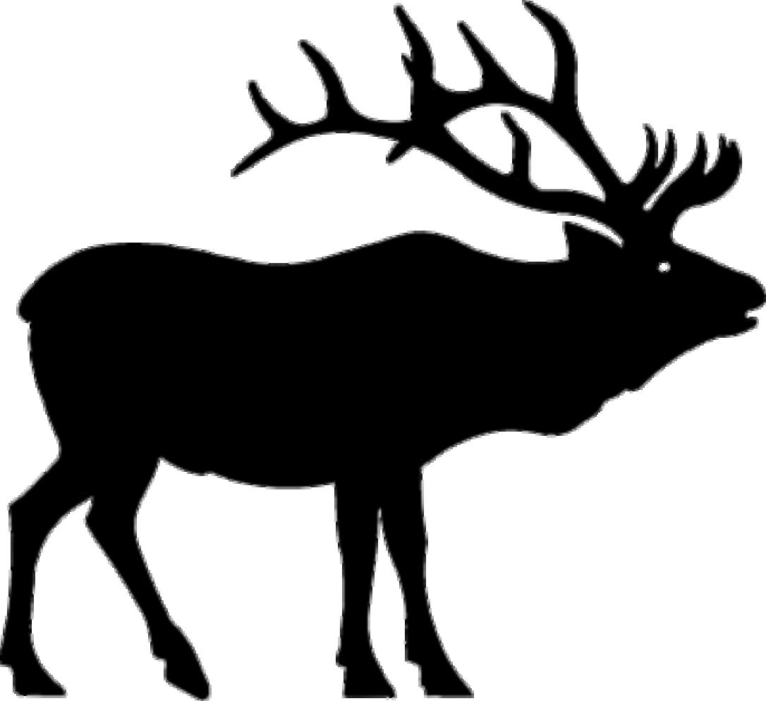 Elk Clipart 18 - Elk PNG Black And White
