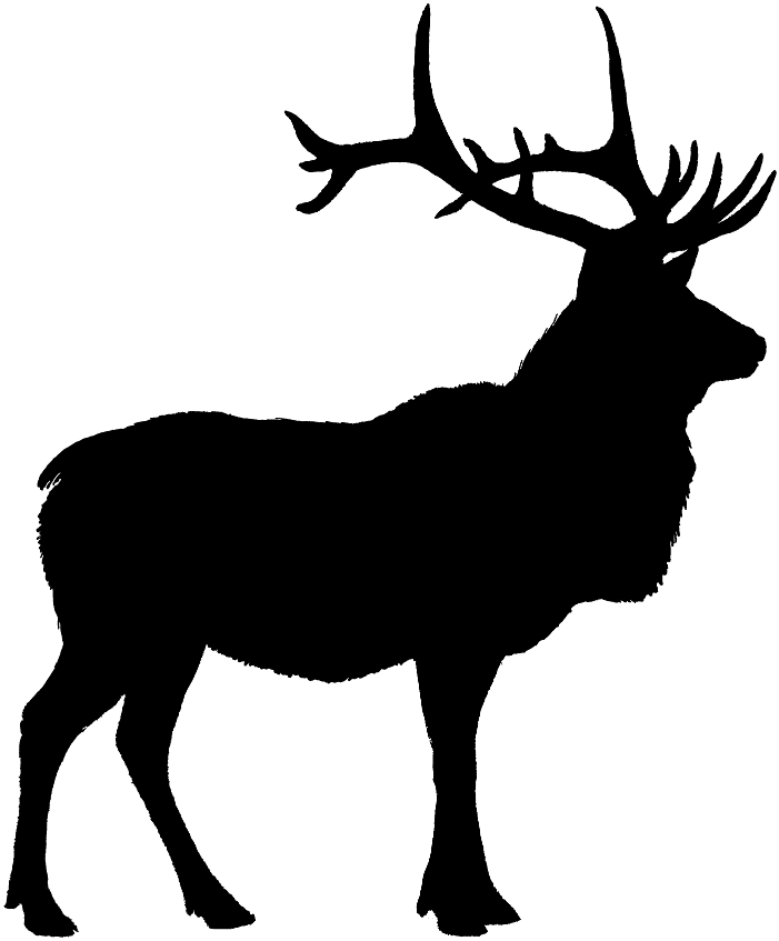 Elk PNG Black And White - 63932