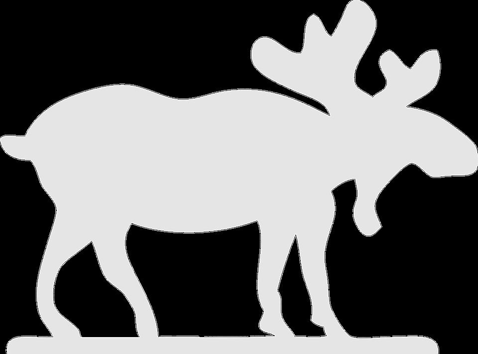 Moose, Stag, Antler, Elk, Wildlife, Horned, Horn - Elk PNG Black And White