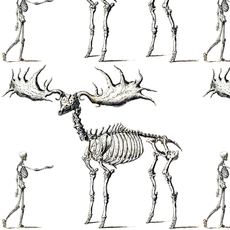 Elk PNG Black And White - 63945