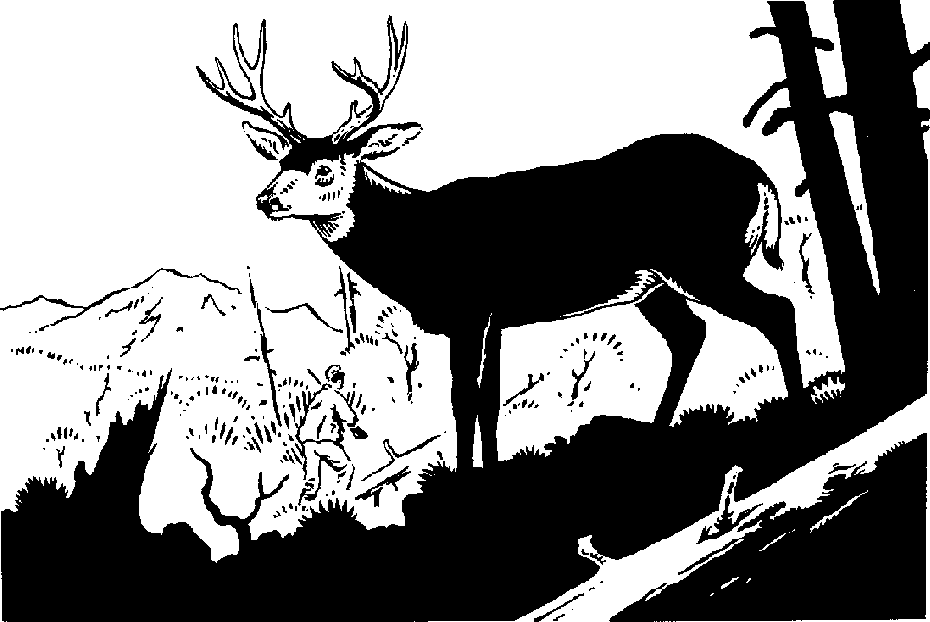 Elk PNG Black And White - 63942