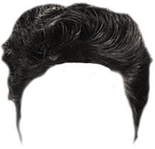 Elvis Hair PNG-PlusPNG.com-218 - Elvis Hair PNG