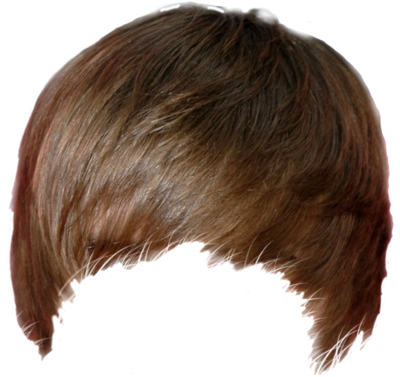 Hair PNG Free Download - Elvis Hair PNG