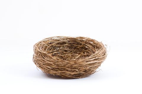Empty Nest PNG - 78430
