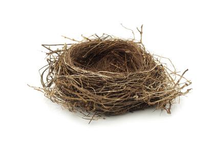 Empty Nest PNG - 78431