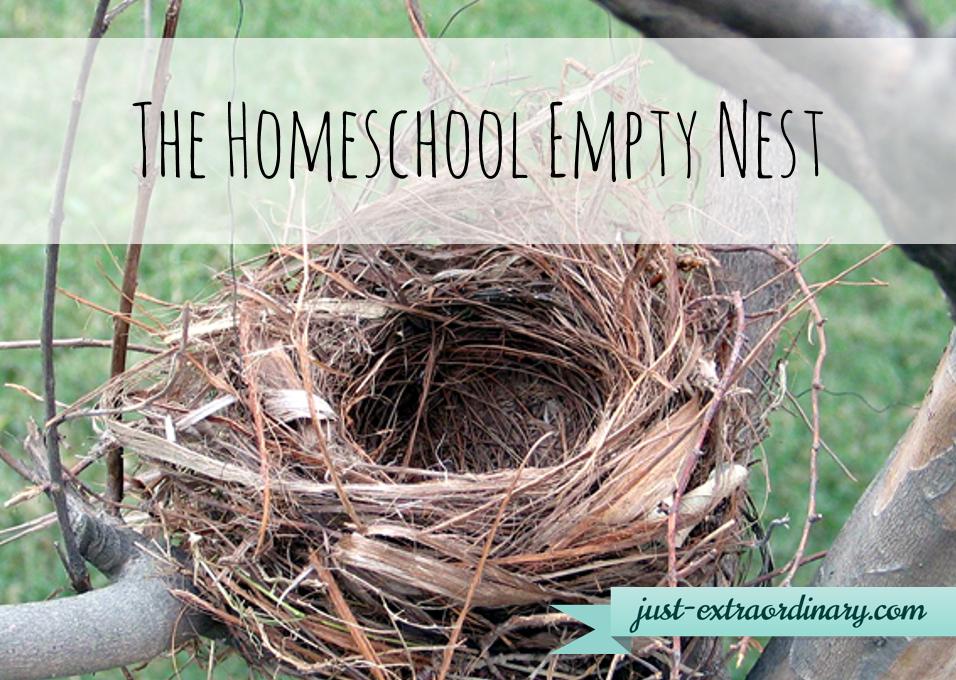 Empty Nest PNG - 78439