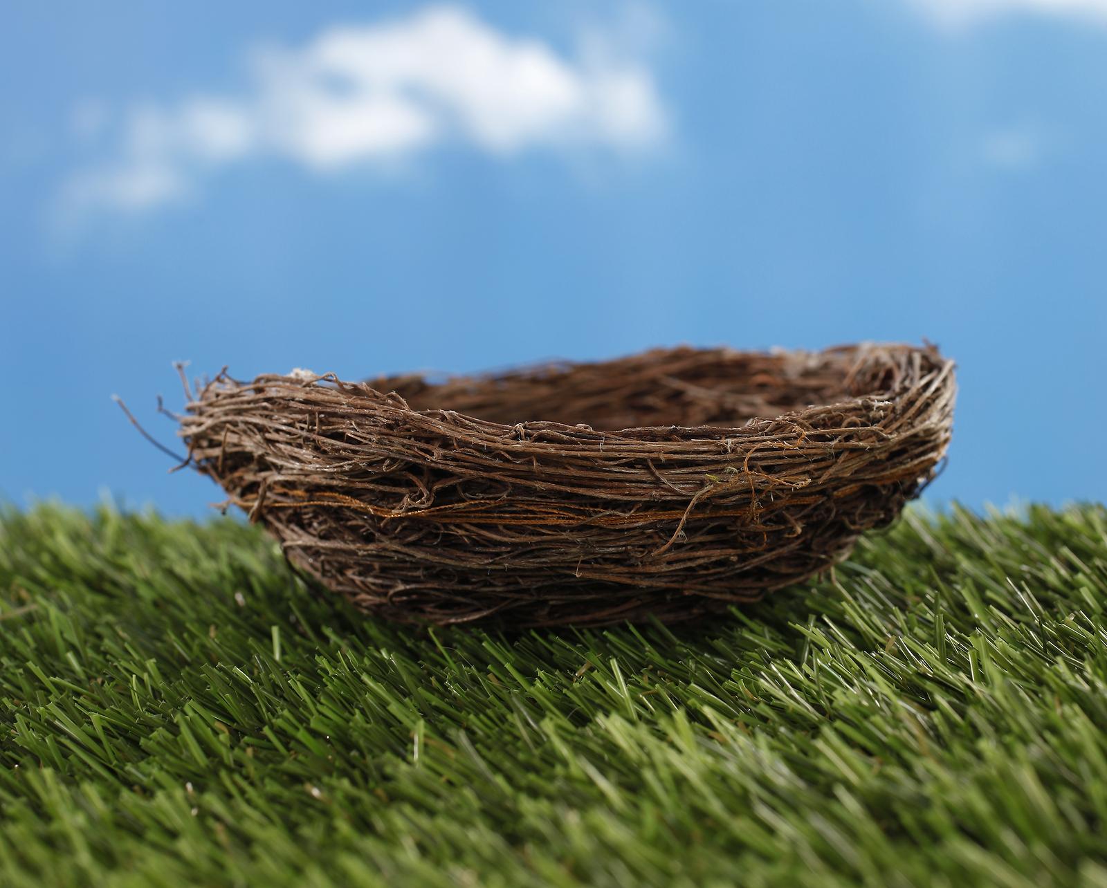 Empty Nest PNG - 78437