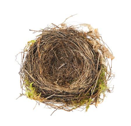 Empty Nest PNG - 78425