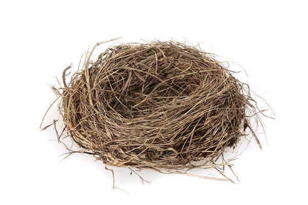 Empty Nest PNG - 78429