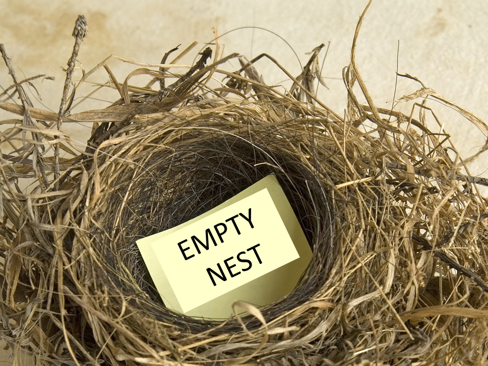 Empty Nest PNG - 78438