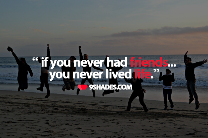 if you never had friends friendship quote - Enjoyment With Friends PNG