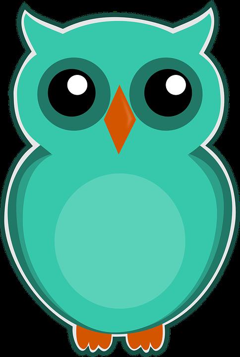 eule blau grün cartoon vogel niedlich tier natur - Eule Blau PNG