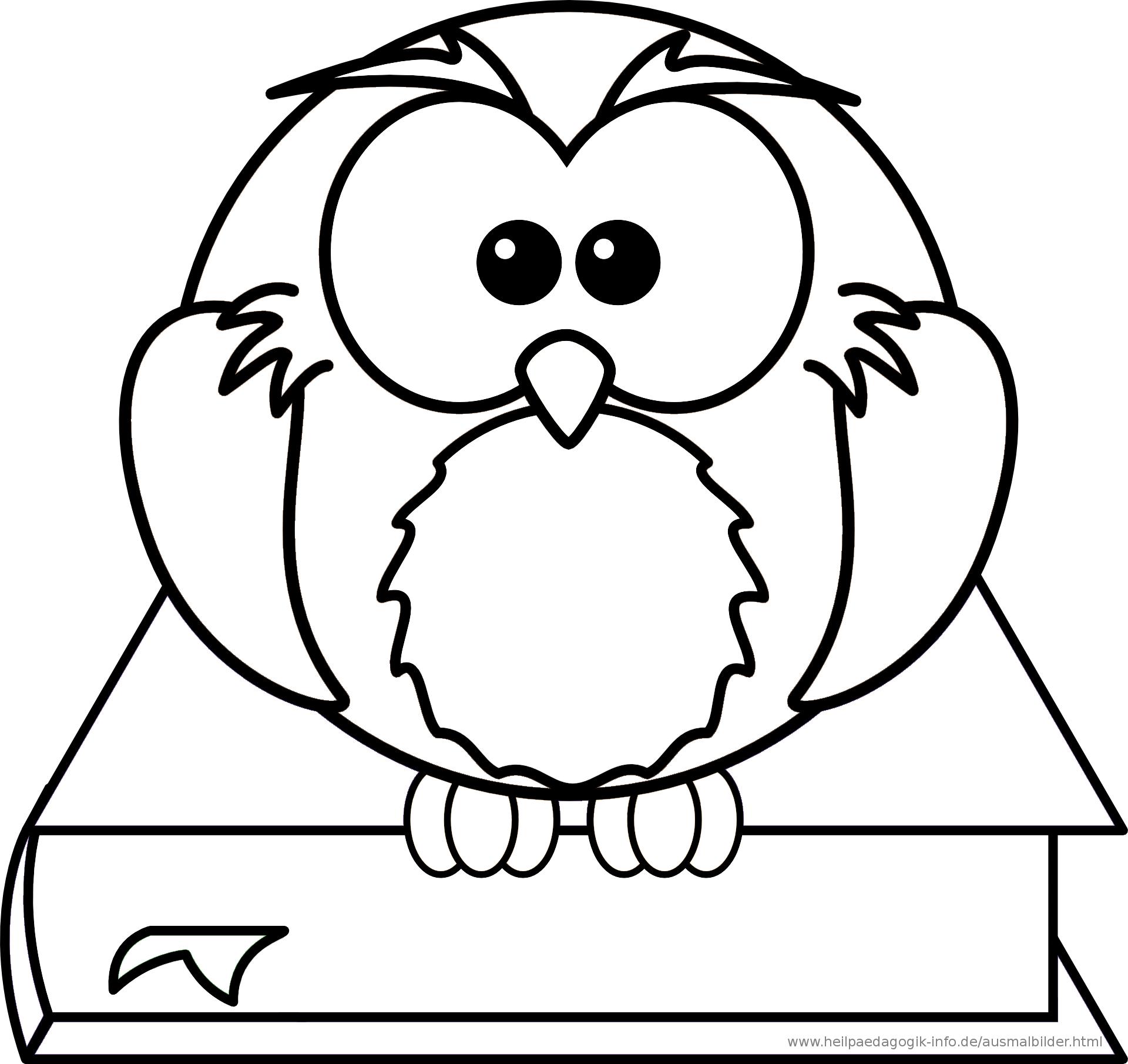 Als PDF oder PNG anzeigen - Eule Schule PNG