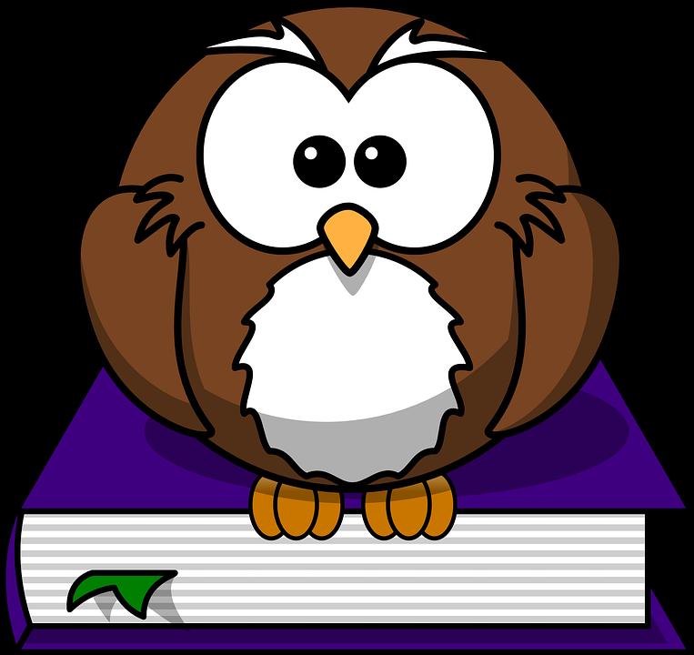 Literatur, Bibliothek, Lesung, Eule, Buch, Studie - Eule Schule PNG