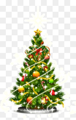 Christmas tree, Christmas, Trees, Christmas Tree PNG Image - Evergreen Tree PNG HD