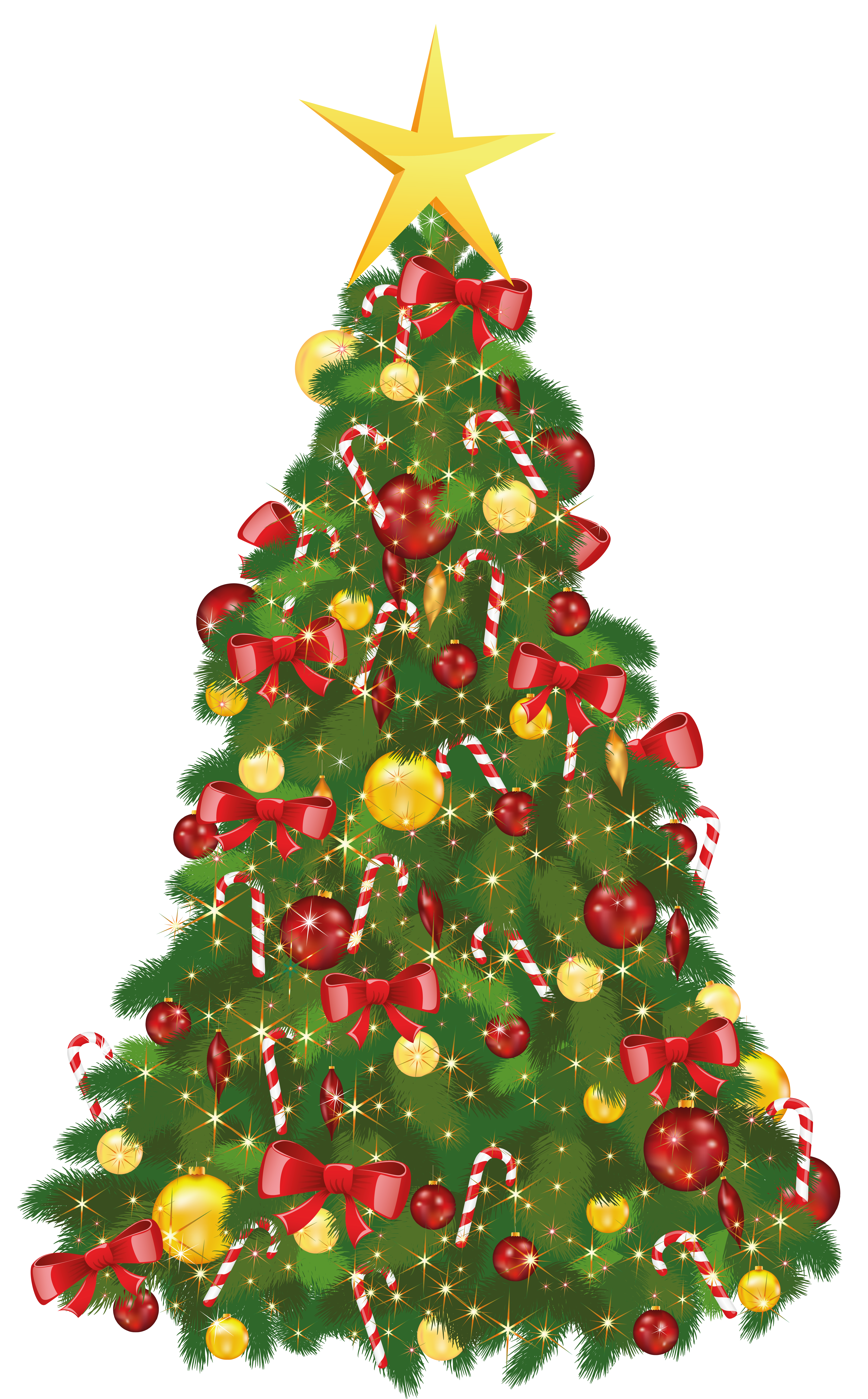 Christmas tree PNG - Evergreen Tree PNG HD