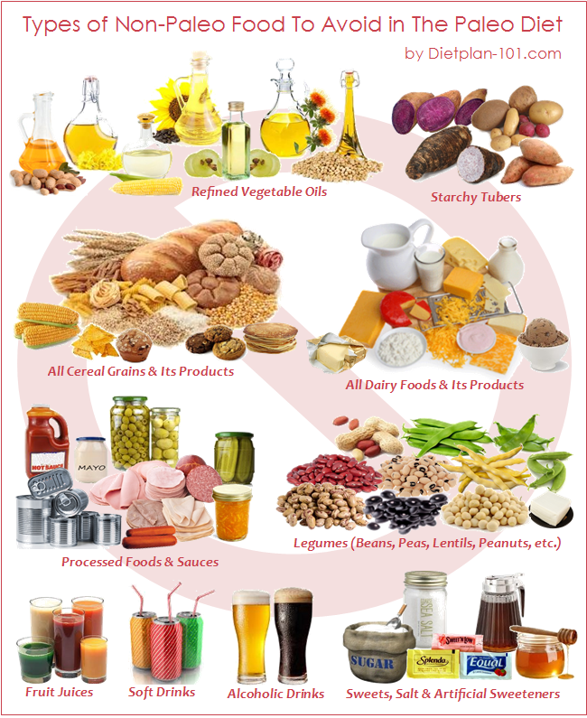 Examples Of Go Foods PNG - 64161