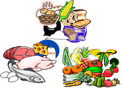 Examples Of Go Foods PNG - 64158
