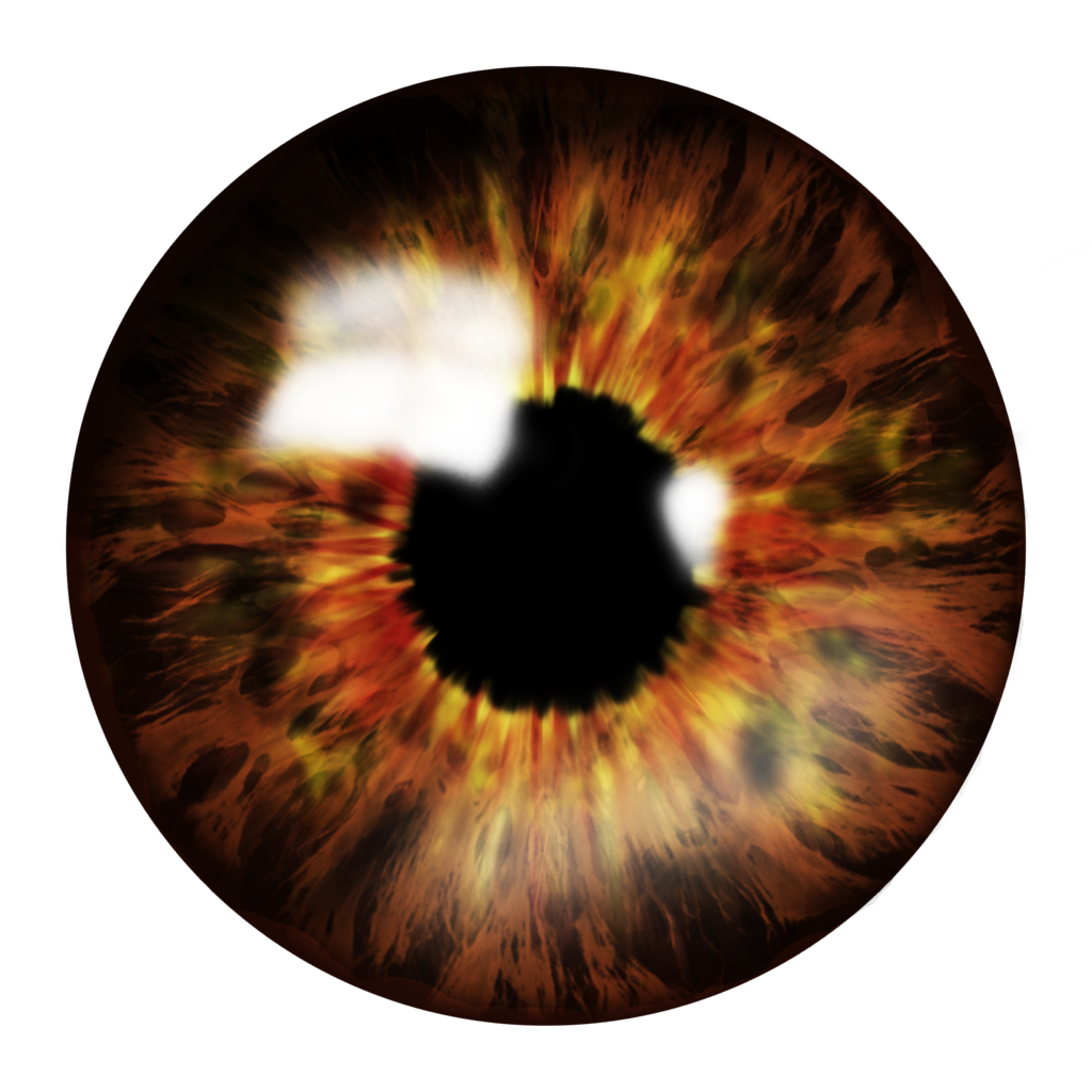 . PlusPng.com Brown-Eye Saved as PNG to preserve transparency by ShadowPrince14 - Eyes HD PNG
