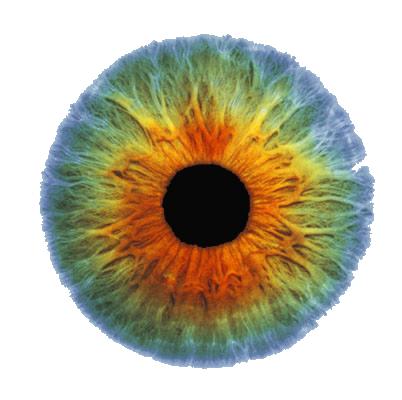 Eyes HD PNG - 117438
