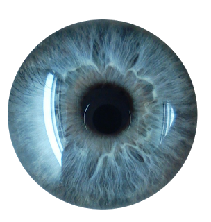 Eyes HD PNG