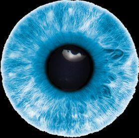 Eyes HD PNG - 117439