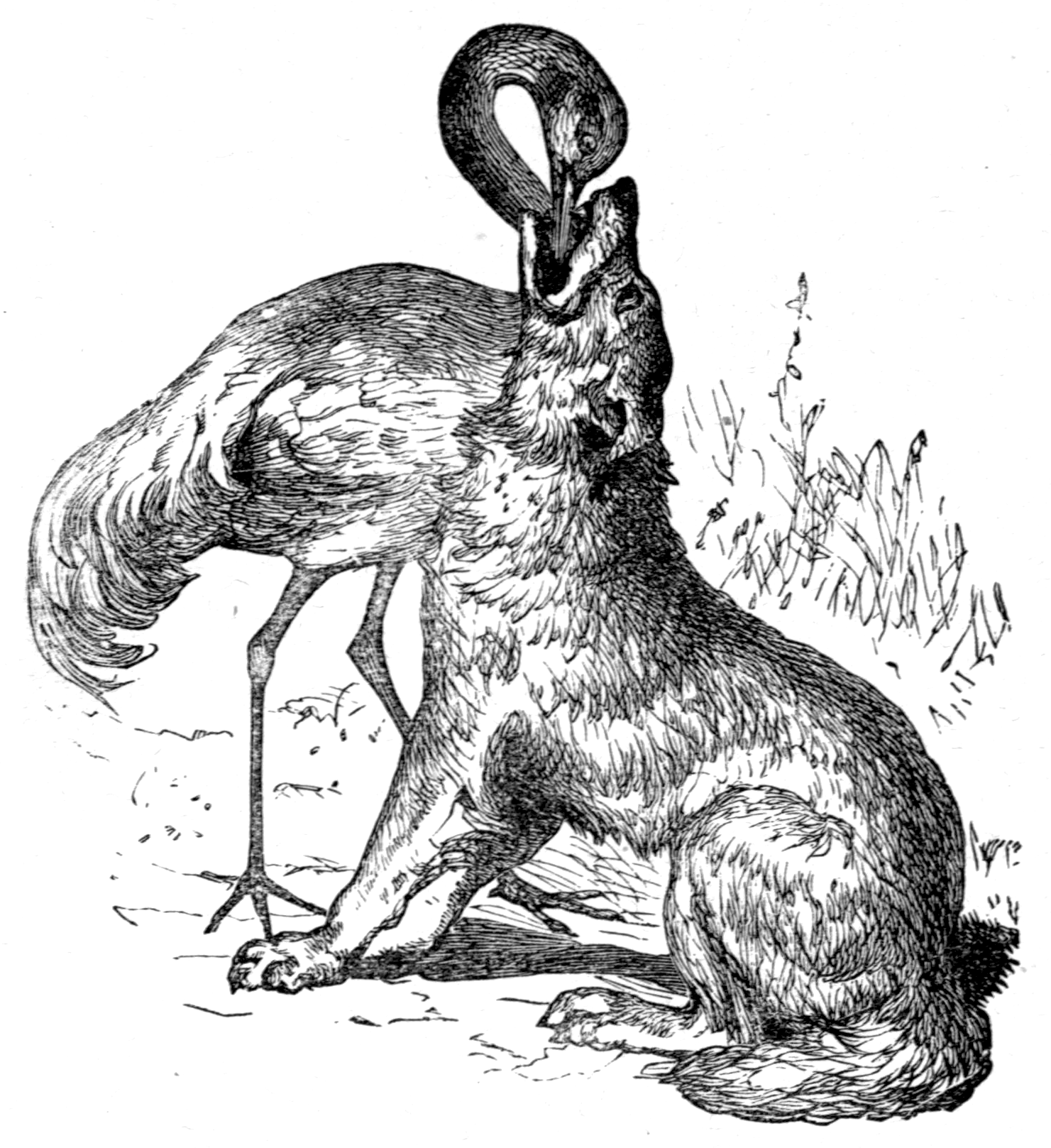 File:Page 33 illustration to Three hundred Aesopu0027s fables (Townshend).png - Fables PNG