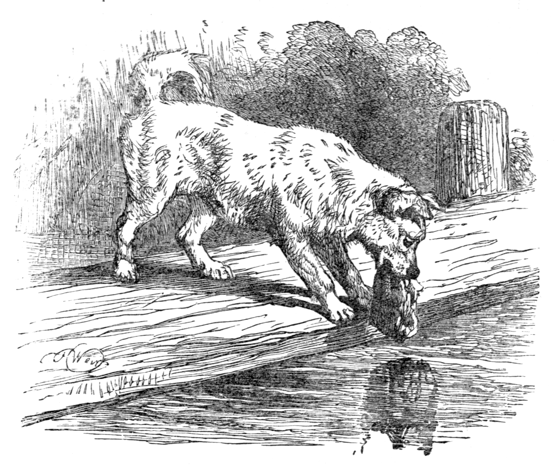 File:Page 39 illustration to Three hundred Aesopu0027s fables (Townsend).png - Fables PNG