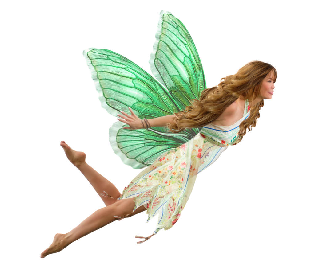Fairy PNG - 14075