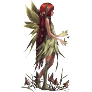 Fairy PNG - 14087