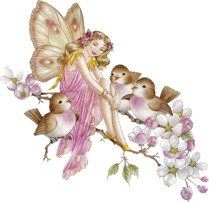 Fairy PNG - 14089