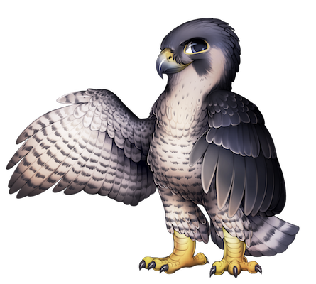 Falcon PNG - 12958