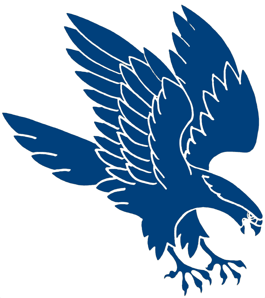 Falcon PNG - 12950