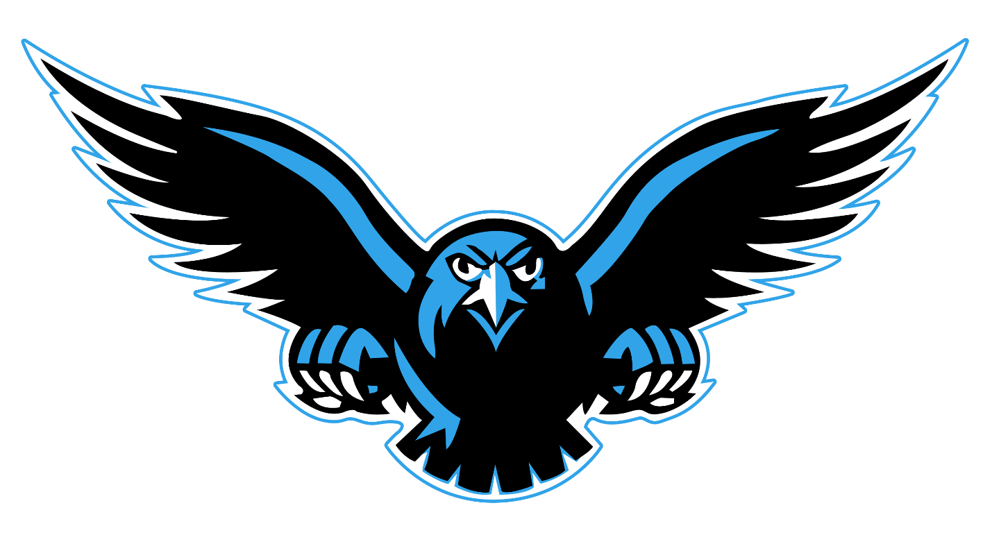 Falcon PNG - 12947