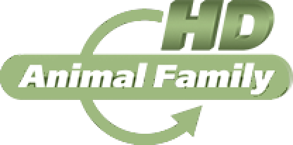 File:Animal Family HD (2014).png - Family HD PNG