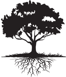 Family Reunion Tree PNG - 64790