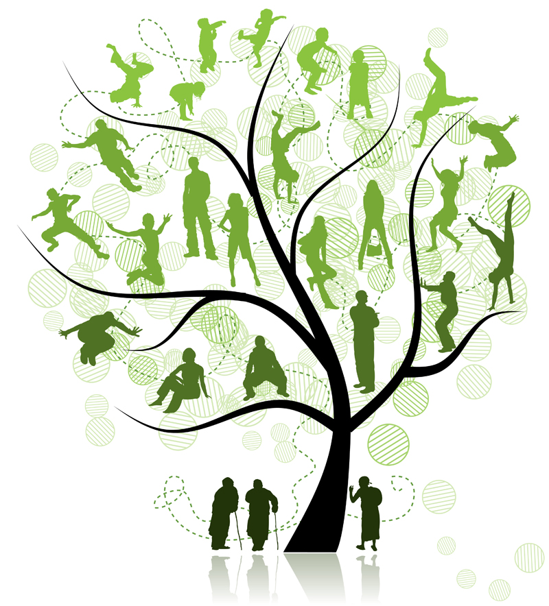 Family Reunion Tree PNG - 64792