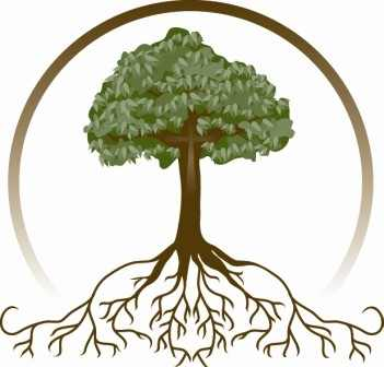 Family Tree Clipart - Family Reunion Tree PNG