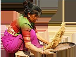Woman Farmer - Farmer PNG HD Images
