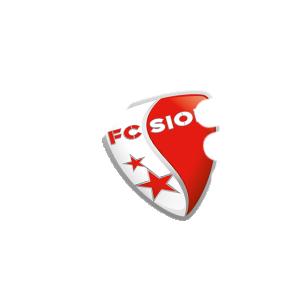 Partout avec le FC SION ! - Fc Sion PNG