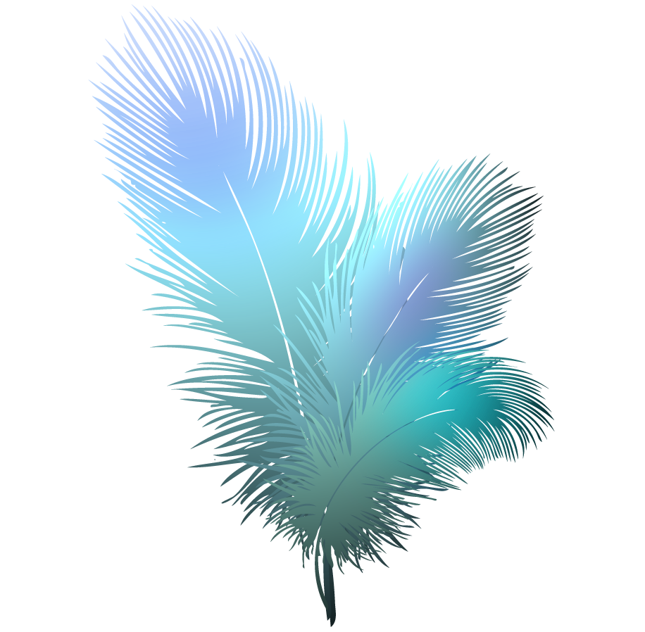 Feather HD PNG - 90473