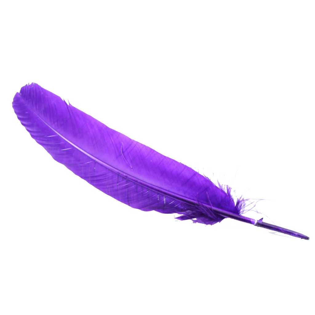 Feather HD PNG - 90475